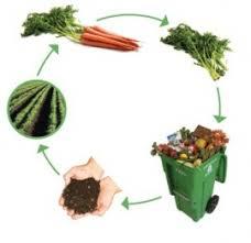 Il compost cos come si produce a cosa serve 100casa - Compost casalingo ...