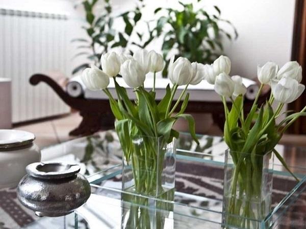 Come curare i fiori freschi recisi e farli vivere di più
